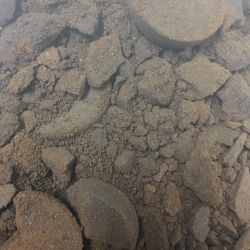 Ground coffee scrub