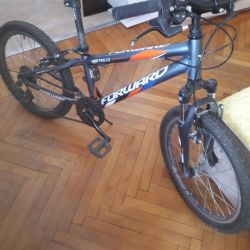 Teenage Bike