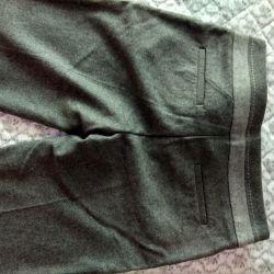 Breeches size 46