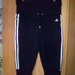 Maternity breeches adidas