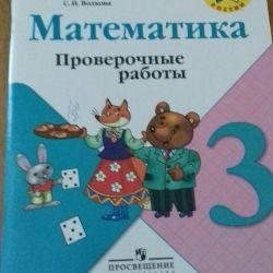 Mathematics test work new