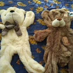 Teddy Bear Shell