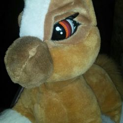 Pony Tofi