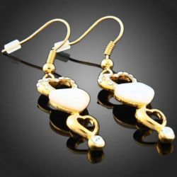 Accessory, decoration. Earrings