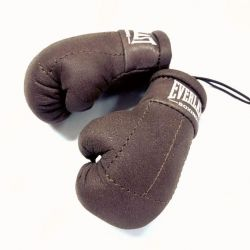 Boxing gloves and MMA souvenir in the car