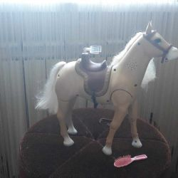 Horse for princess