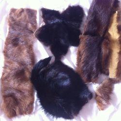 pelts of nutria