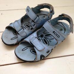 Ecco Sandals Ecco 35 μέγεθος