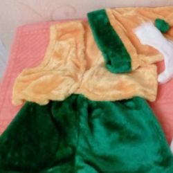 gnome and parsley costume rental