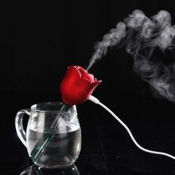 Air Humidifier Rose