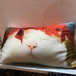 Подушка антистресс с котом
