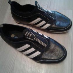 Shoes p36