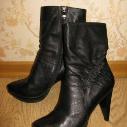 Women's ankle boots CARNABY