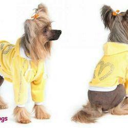 Φούτερ βελούδινο κίτρινο (ρούχα για σκύλους)