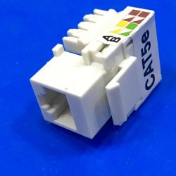 RJ45 mother insert into the housing of the sockets