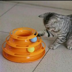 Toy for cats Track