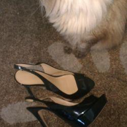 Sandals p 37