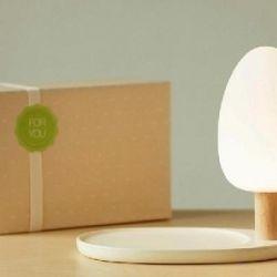 LED-lamp + wireless charging