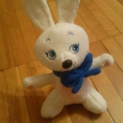 Olimpik tavşan