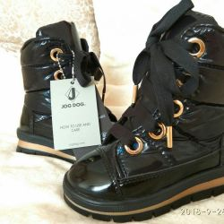 Jog Dog new shoes
