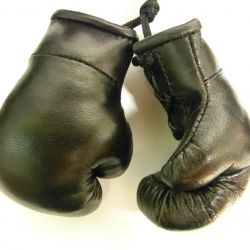 Souvenir boxing gloves from natures skin.