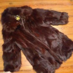Coat of fox