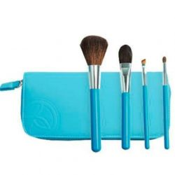 A set of brushes for makeup Eves Rocher, new