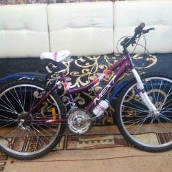 bike with speeds