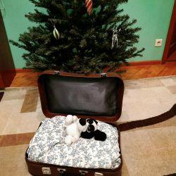 suitcase ussr
