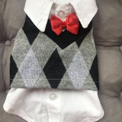 Clothing for a little dog york mini shirt