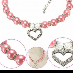 Collar for cats or dogs