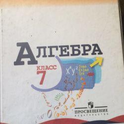 Textbooks grade 7. Algebra, computer science, geometry