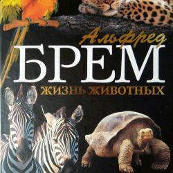 An Encyclopedia of Animal Life