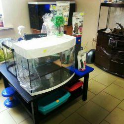 New Aquariums !!
