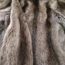 Fur coat raccoon