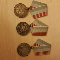 Medal of the USSR (copy)