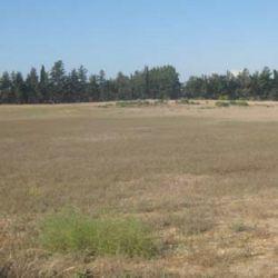 Прилеглі поля в Dromolaxia, Meneou, Ларнака