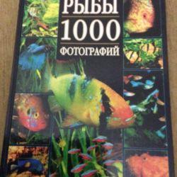 Rezervați pește de acvariu 1000 fotografii