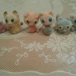 Kitty kitty boxing