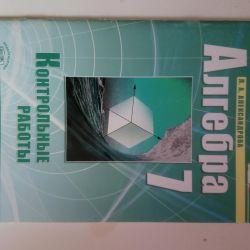 Algebra clasa a VII-a. Lucrări de verificare.