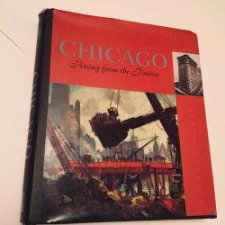 Richard Kahan Chicago rising from the prairie