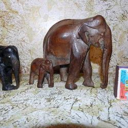 Black Mahogany Elephants India