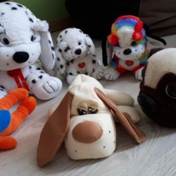 Soft toys give for chocolate