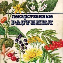 Plante medicinale 1990