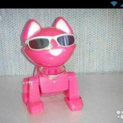 Robot de pisici. Cu lumină, sunet.
