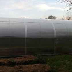 Greenhouse PRO 3/4 art nr. 3/4 pry