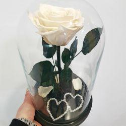 Eternal rose in a flask