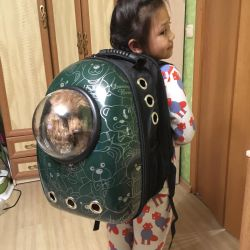 Carrying Pet Backpack