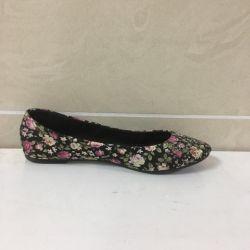 Ballet shoes female art 836