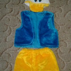 Costume duckling